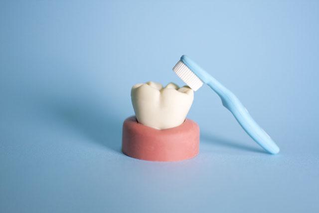 画像3歯のクリーニングについて分かりやすく解説
