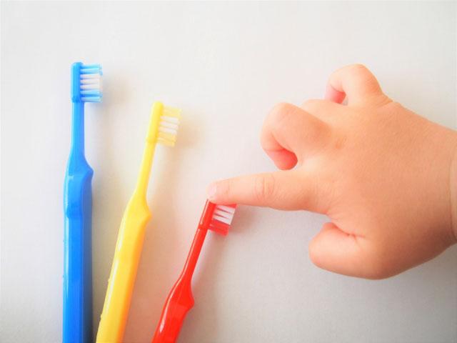 歯磨きの仕方タイミング画像2